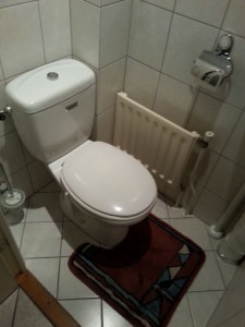 Renovatie-toilet-B1