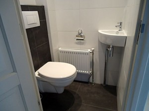 Renovatie-toilet-B4