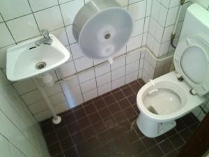 Toiletrenovatie-U1-300x225